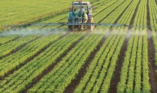 India, il 30% dei pesticidi è contraffatto: rischi per la salute, l'ambiente e le esportazioni. Un rapporto delle Camere di commercio