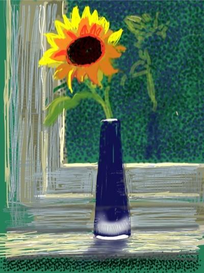 David Hockney iPad sunflower