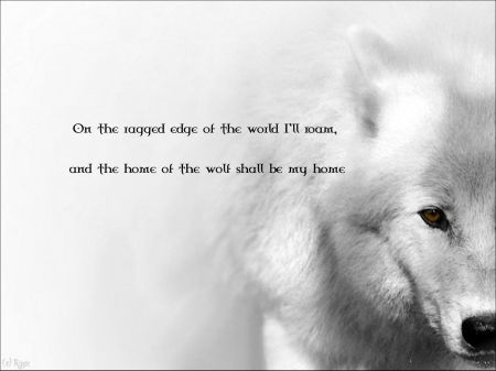 a white wolf....the lone wolf.&lt-3&lt-3 | Quotes | Pinterest | Lone ...