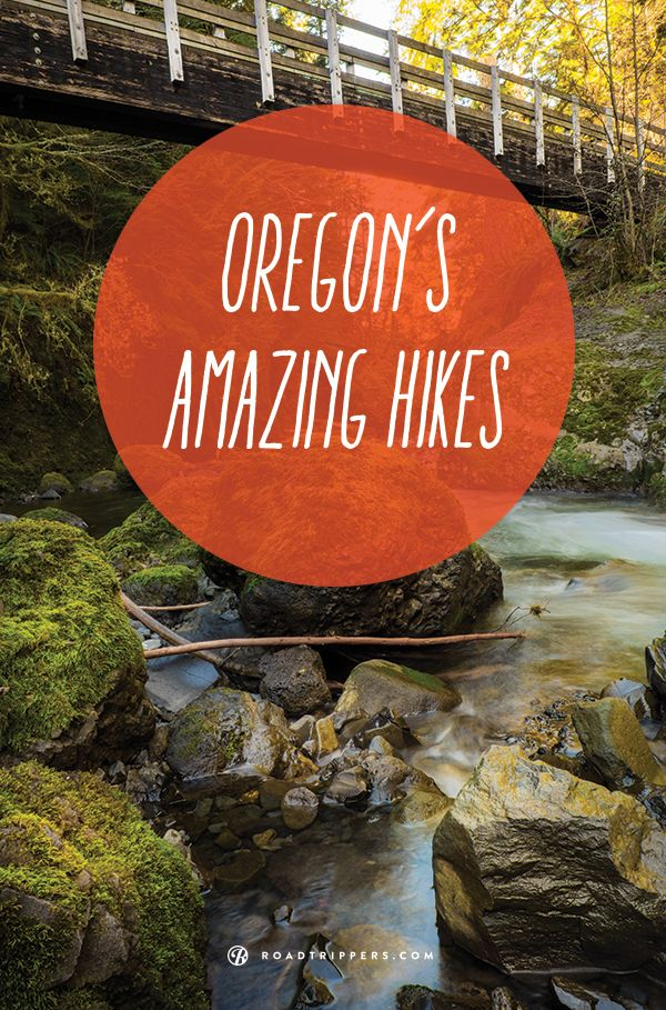 Explore the Oregon coast with these great hiking spots
