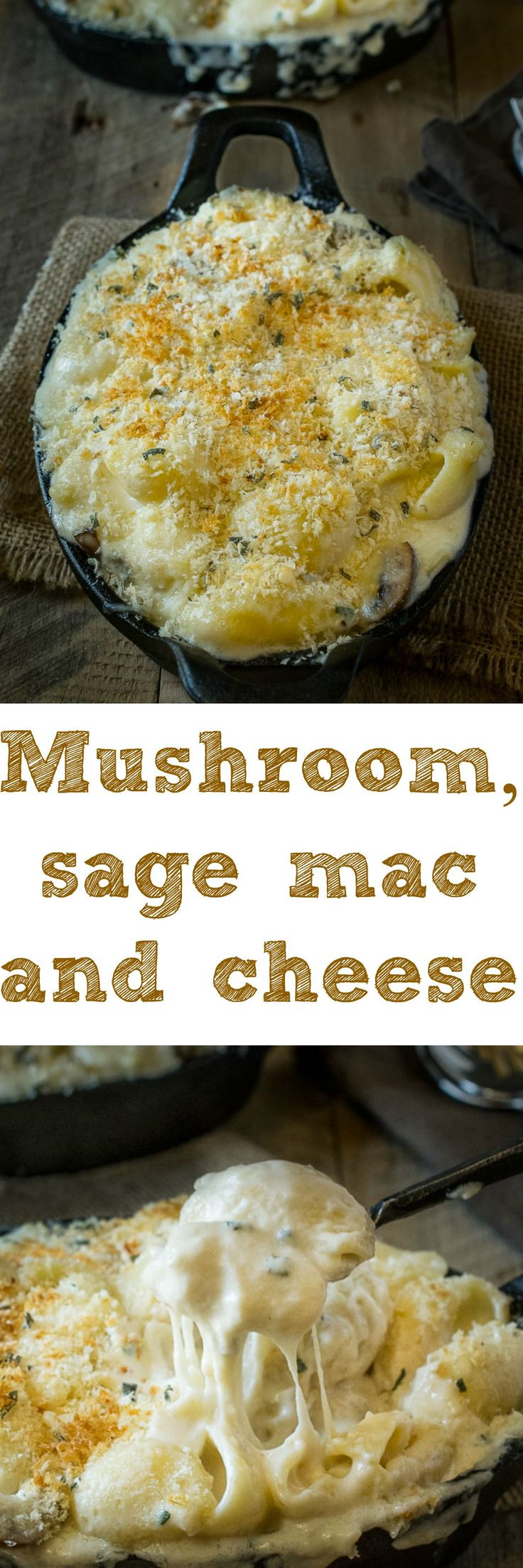 Mushroom sage, mac and cheese - Creamy, really creamy and gooey cheese sauce with a meaty bite from mushrooms, earthy flavor from fresh sage (for an essence of Fall) and a crunchy panko breadcrumb topping. It's comfort food taken to the next level.
