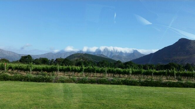 View from La Motte winery