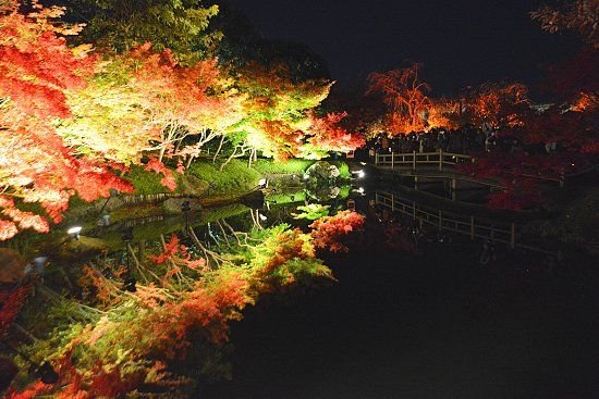 Nabana no Sato Winter Illumination 2012