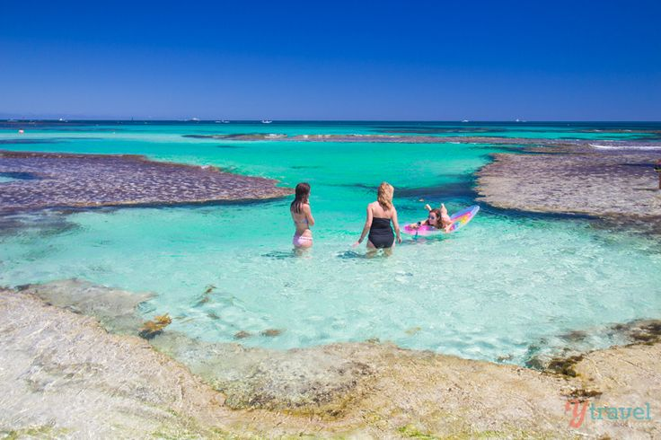 Why Rottnest Island Should Be On Your Australian Bucket