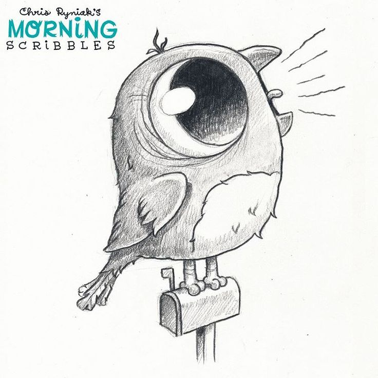 """Behold the majestic call of the American Robin... """"I'M A BIRD! I'M A BIRD! I'M A BIRD! I'M A BIRD!""""  #morningscribbles"""