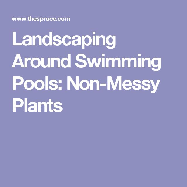 25 Best Ideas About Plants Around Pool On Pinterest
