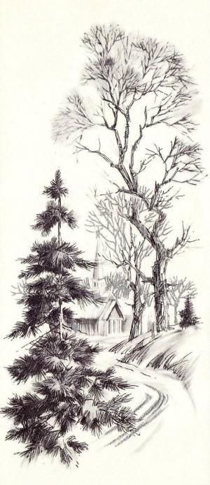 Wintery Trail - sketching trees. pencil or pen. good example of texture. by sara