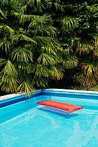 p1075m933731, Pool, Aufblasbar, Blatt, Europa, Luftmatratze, Pool, Sonnenschein, plain Rauschen