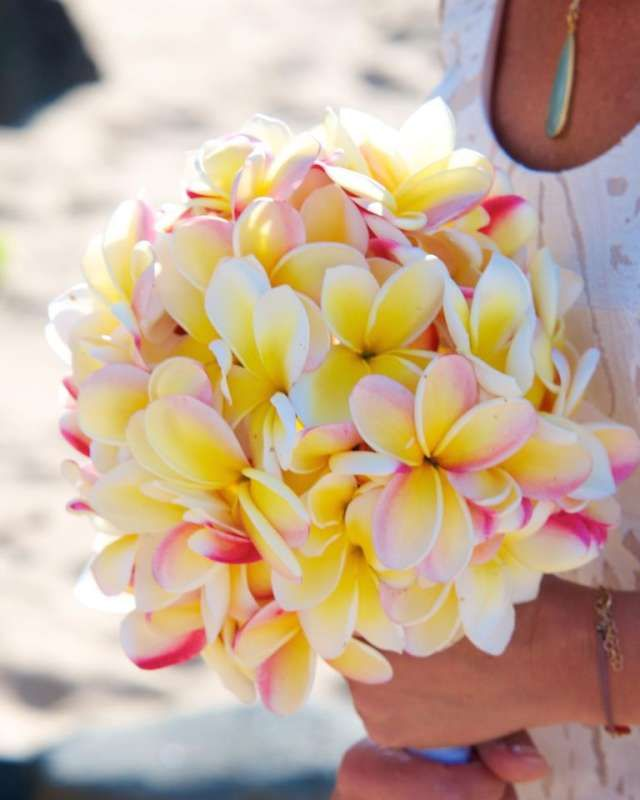 yellow + pink plumeria bouquet. YESS!