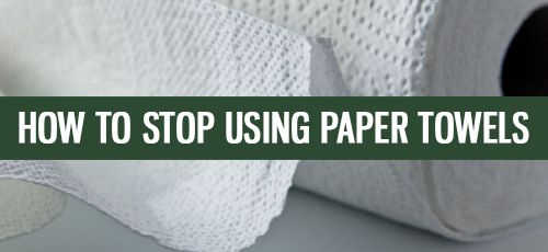 How You Can Stop Using Paper Towels in 10 Easy Steps