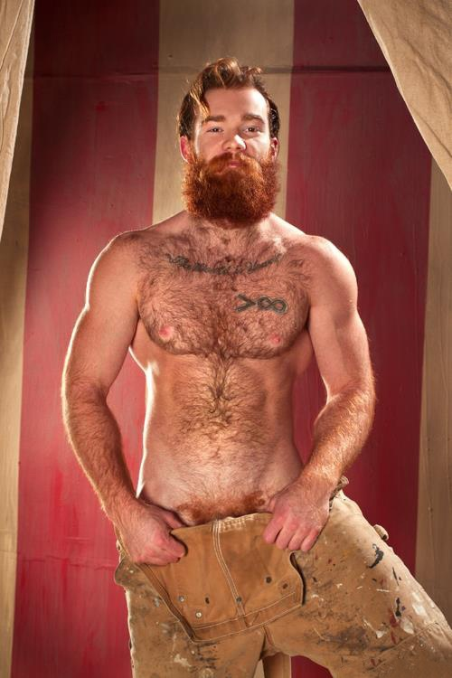 Hairy redhead pornstar hairy redhead pornstar streaming redhead sex pics and galleries
