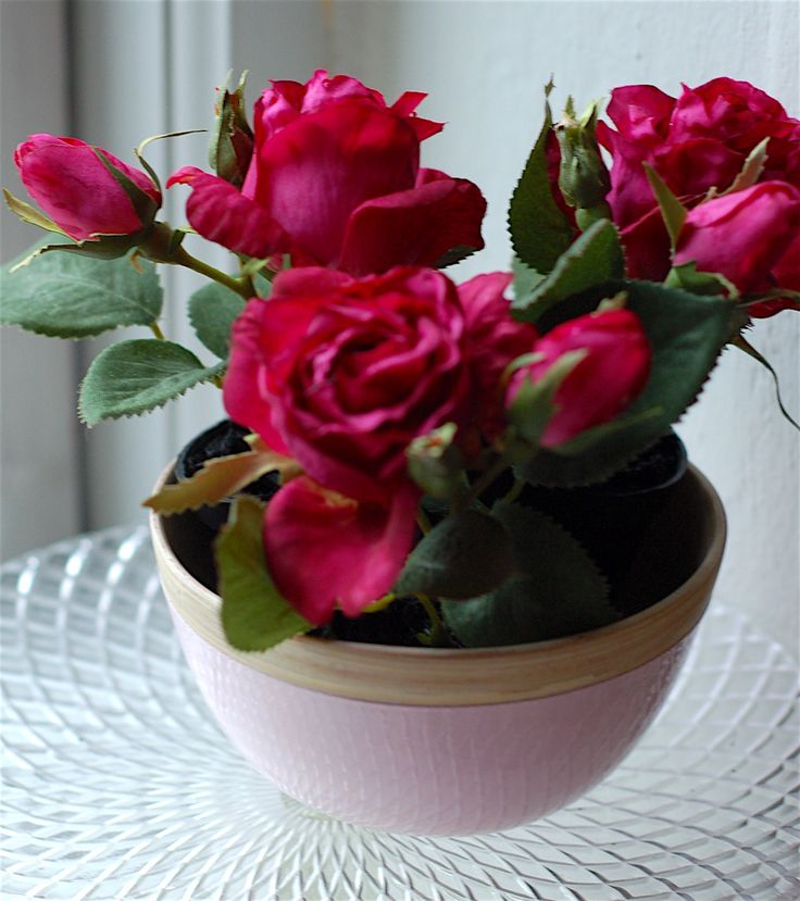 gorgeous red mini roses in pastel pink wooden bowl