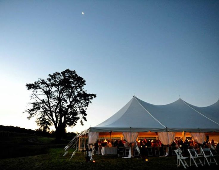Mayfield Vineyard Weddings and Functions-838366