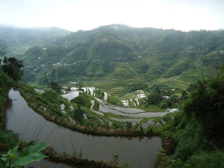 2000 year old rice paddies..astonishiing