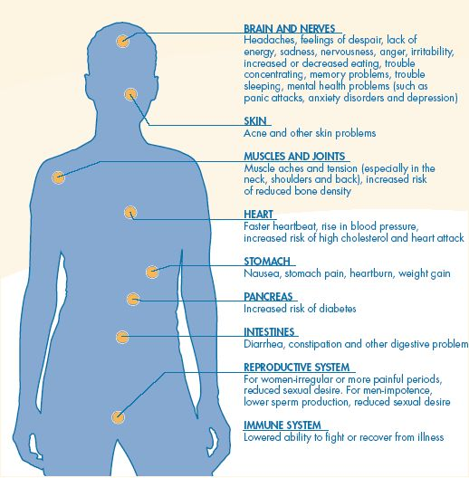 the effects of stress on the human body