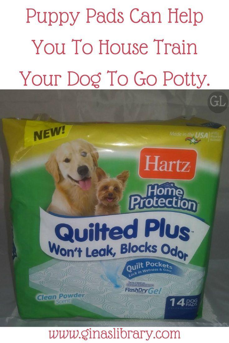 4cfd72dd33691a287e79b4c88edfbf45 - How To Get My Puppy To Use Puppy Pads