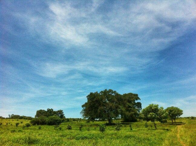 The Hill, Sumbawa
