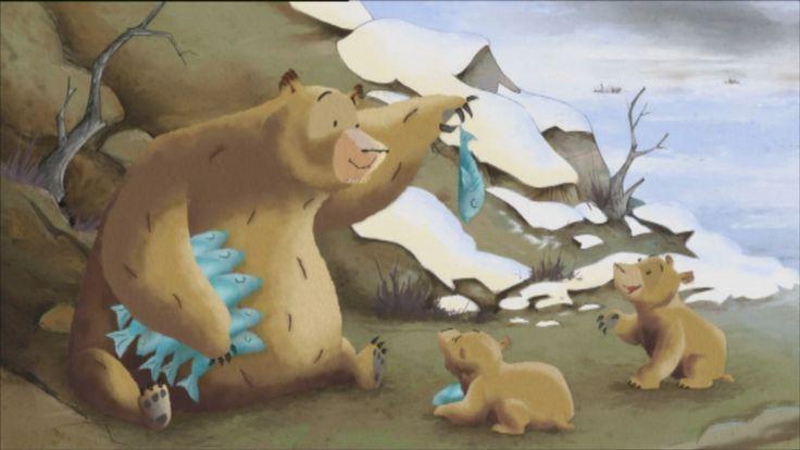 Als een dier zich heeft geëvolueerd betekent dit dat een dier zich heeft aangepast aan omstandigheden van zijn leefgebied. Is dit ook zo gegaan bij bruine beren en ijsberen?