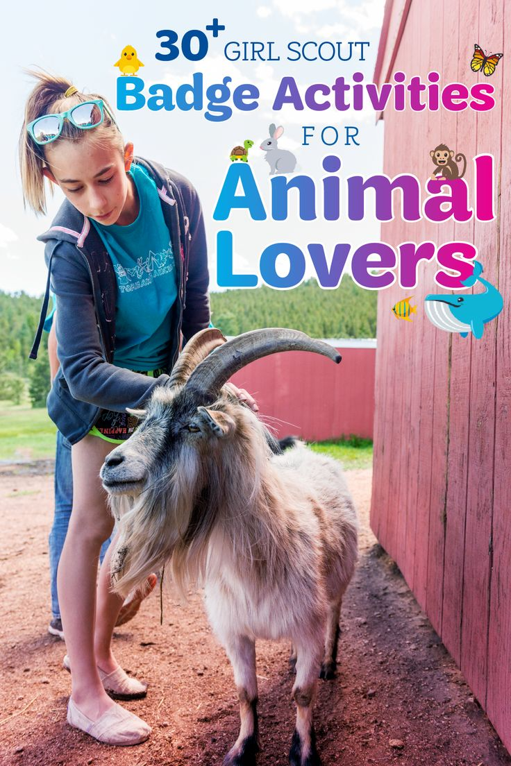 Furred or feathered, small or large, animals make our lives a little more bearable. Here are 30+ activities to help your Girl Scout earn her animal-related badges (and celebrate National Pet Month, too)!