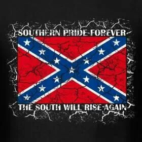 262 best images about southern flags on pinterest civil - Jawga boyz wallpaper ...