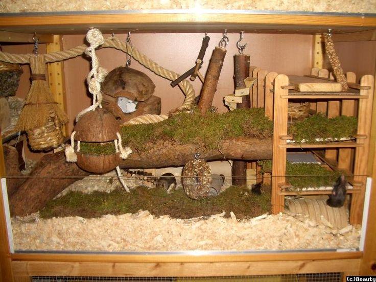 85 besten hamsterstall bilder auf pinterest haustiere zwerghamster und hamster gehege. Black Bedroom Furniture Sets. Home Design Ideas