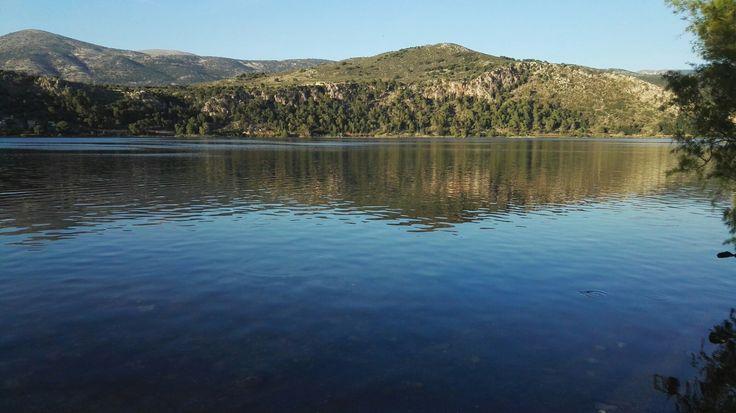 Λιμνοθαλλασα του Κουταβου- Αργοστολι, Κεφαλονια