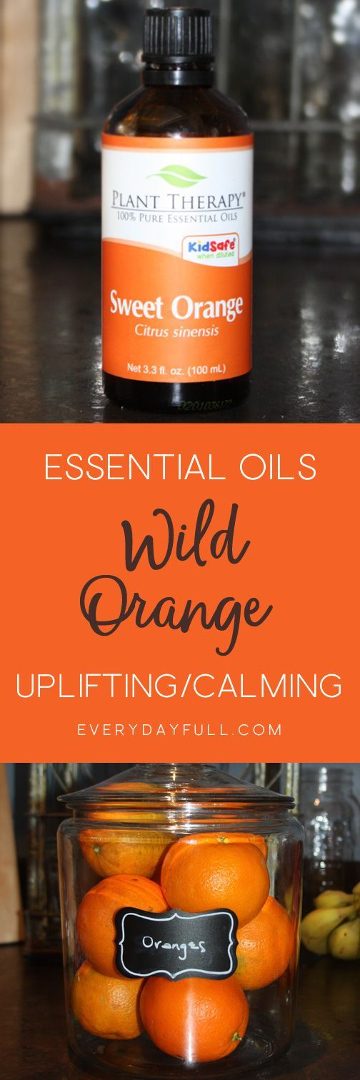 ESSENTIAL OIL BASICS: WILD (SWEET) ORANGE - If you're new to essential oils, or an old pro, this post is sure to shed new light on the amazing benefits of orange essential oil AND share numerous ways to use this oil in your everyday life. Relax and calm down, uplift and invigorate, freshen sour laundry, help ease PMS or scent your favorite lotion!