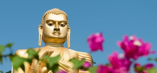 Den gyldne buddhastatue ved Det Gyldne Tempel, Sri Lanka