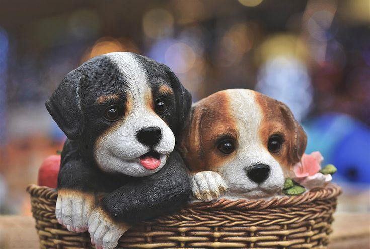 Бесплатные фото на Pixabay - Собака Фигура, Собака в 2020 ...