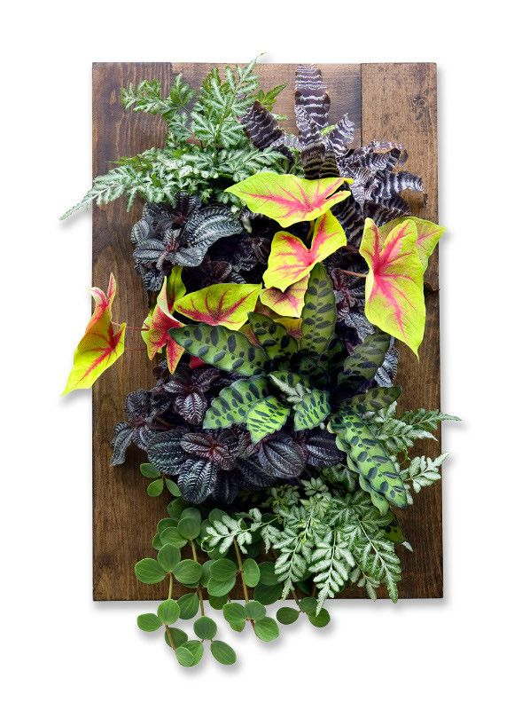 Framed GroVert Living Wall Kit