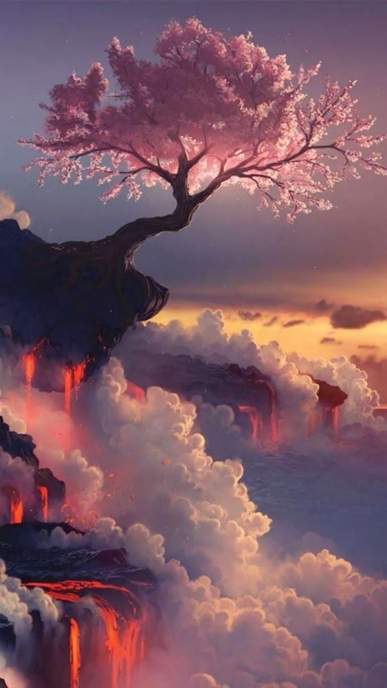 Geography Cherry Blossom Fuji Volcano, Japan, Asia
