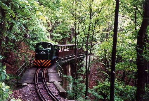 Narrow-gauge train in the forest. Lillafüred, Hungary.