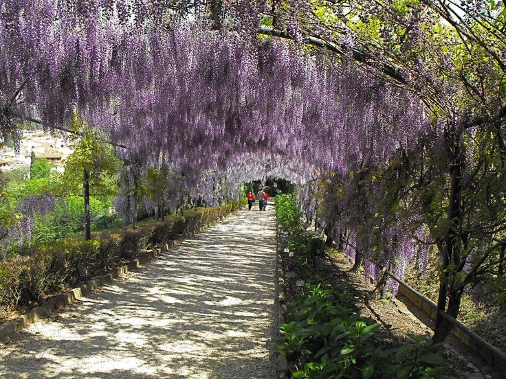 Secret Garden of Giardino Bardini Florence Italy -- 10 Unusual Things To Do In Florence, Italy