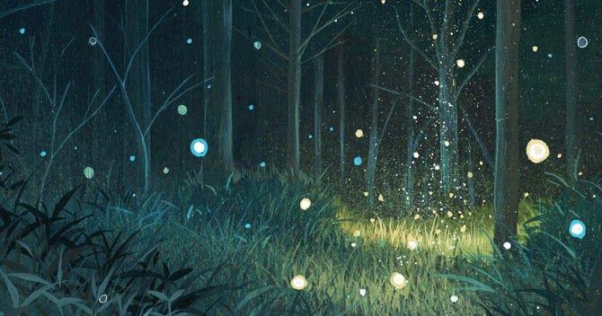 """Orbes: Seres de luz a tu alrededor"""