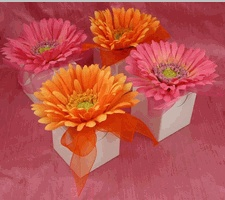 Gerber Daisy Favor Boxes - Daisy Favor Boxes for Daisy Favors