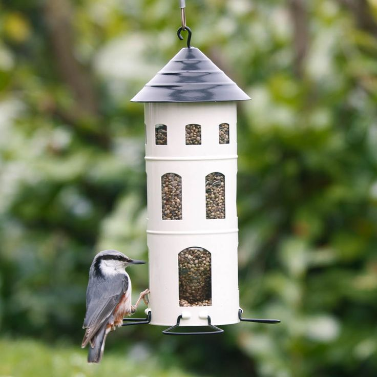 Mit den kurzen Bügeln ziehen Sie kleinere Vögel wie Finken und Spechte an. Nutzen Sie die längeren Bügel, können auch größere Artgenossen wie zum Beispiel Amseln Platz nehmen.