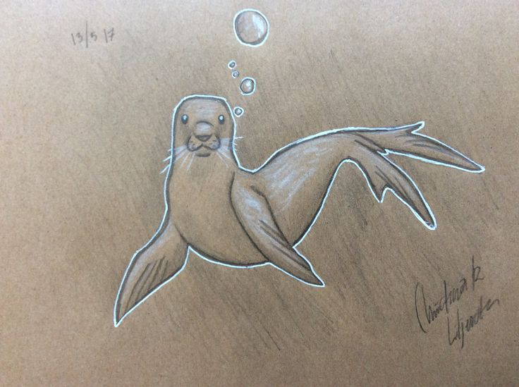 Seal; Drawing by ArtWolf