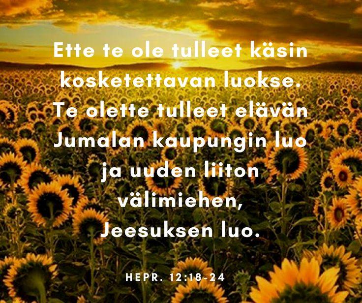 Ette te ole tulleet käsin kosketettavan luokse. Te olette tulleet elävän Jumalan kaupungin luo ja uuden liiton välimiehen, Jeesuksen luo. Hepr. 12:18-24