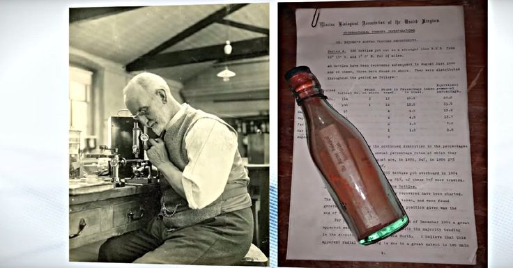 After More Than 100 Years At Sea, The Oldest Message In A Bottle Was Found.