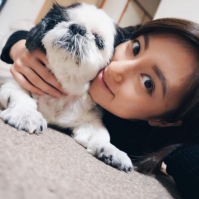 愛しのvivi君15歳。♂ 親バカでもいいの 世界で一番可愛い子だと思ってるから。 片目は義眼。後ろ足は殆ど歩けない。お漏らしもしちゃうね。 でも一番可愛い。宇宙一だと思ってる。 大好きなんだから。 #おやすみんみんぜみ . . . #親バカ部 #愛犬 #犬バカ部 #大好き #犬が好き #シーズー #パグじゃないよ #白黒シーズー #シーズー大好き部 #ふわもこ部 #ワンコ #動物好き #お気に入り #おやすみ #おはよう #iLovedogs #shitzu #blackandwhite #instadogs #animallover #lovestagram #mylove