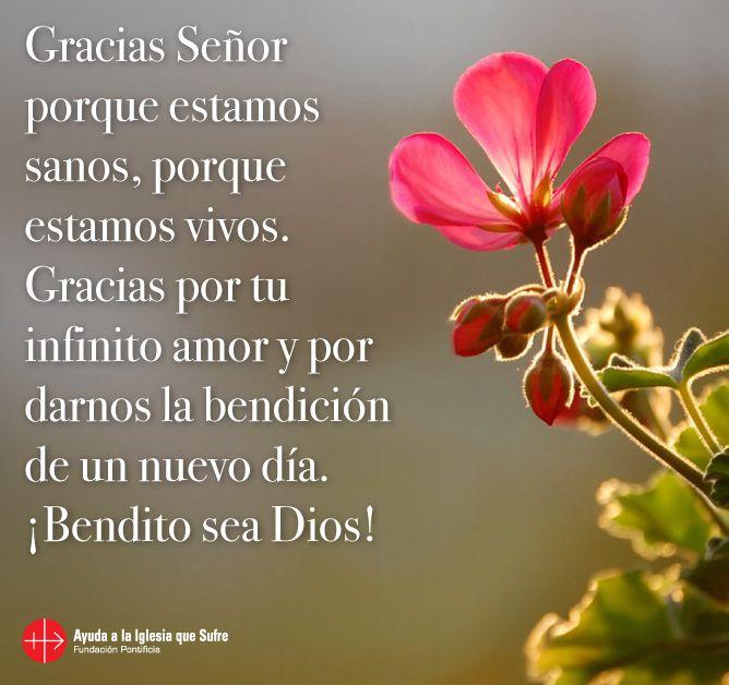 #oraciones