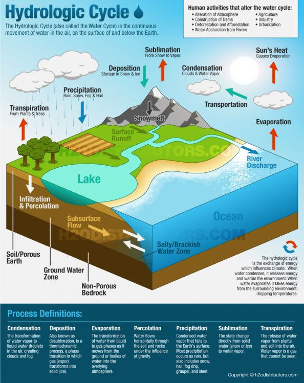 The Water Cycle Infographic. Great resource to use in a middle school science classroom.