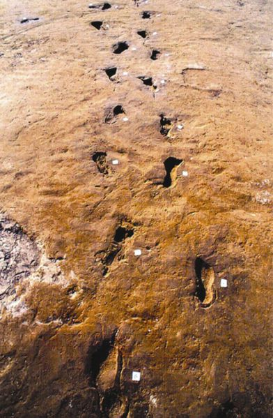 Prehistoric footprints of Bronze Age people escaping from the Avellino eruption