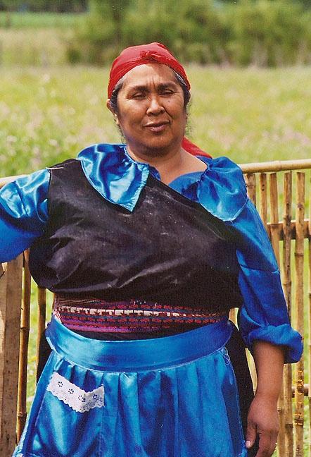 mapuche woman, Chile