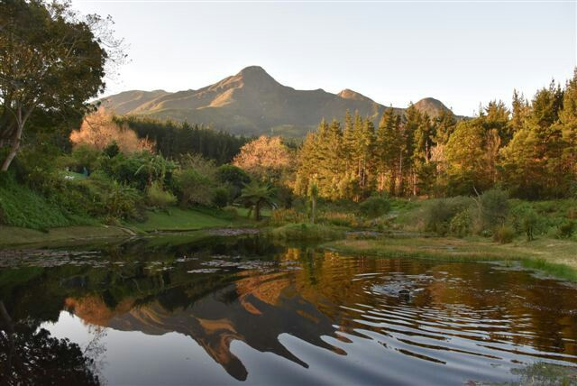 Outeniqua Mountain, George South Africa