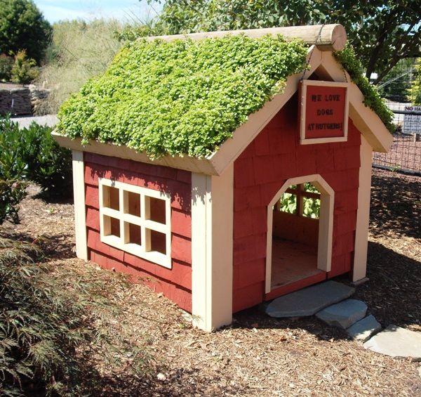 Fantastic Green Living Roof Designs