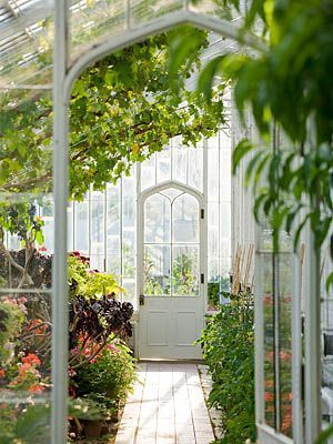 greenhouse love the door