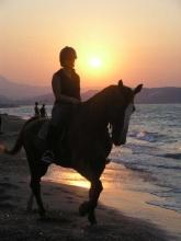 Zoraida - Horse Riding in Georgioupolis (Crete, Greece)