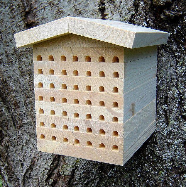 Osmia Lodge Mason Bee House