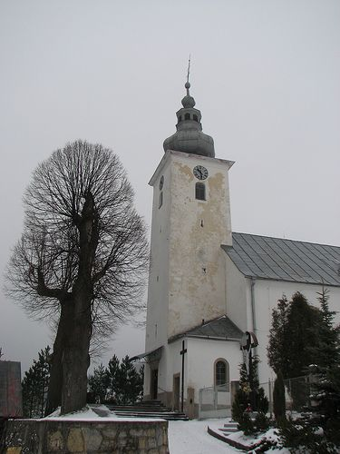church, Cicmany, Slovakia...interesting tree